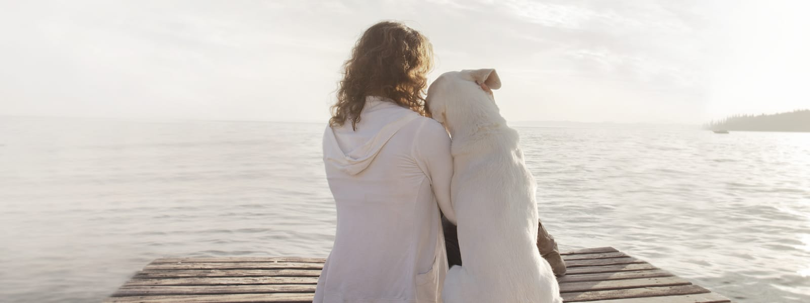 woman and her dog admire together the scenery