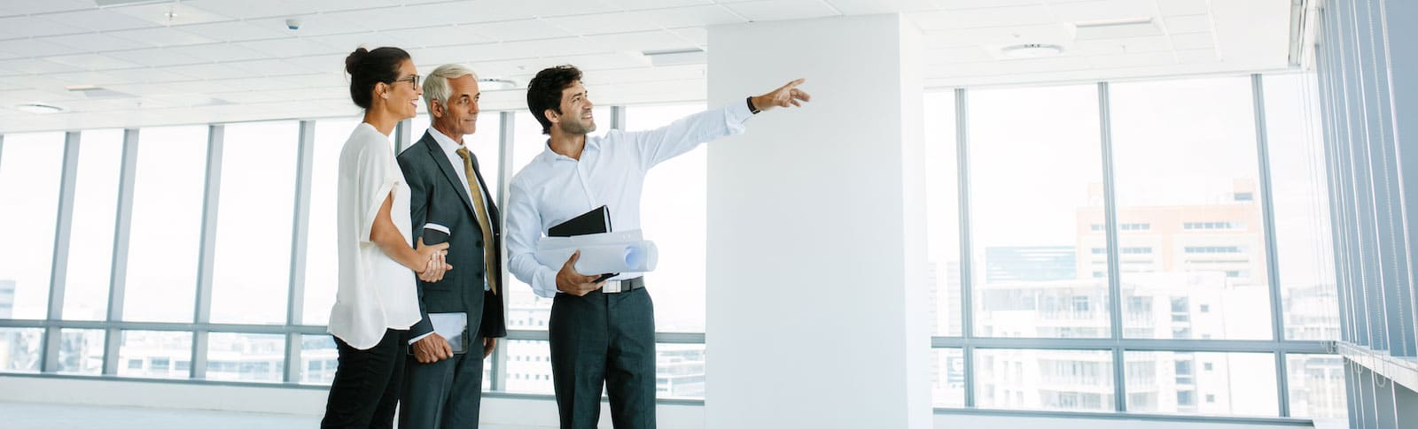 advisors pointing at something out window