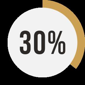 pie chart indicating 30 percent